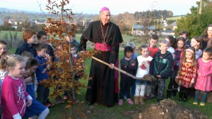 201411-16 Monageer School Planting Tree (2) (2)